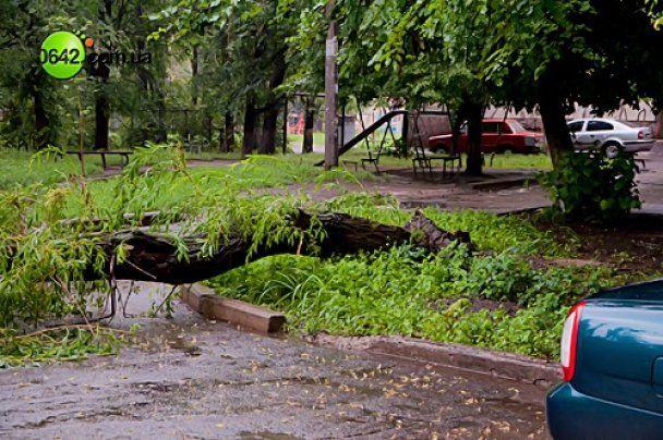 Стихія перетворила Луганськ на суцільну річку