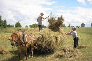 В Украине жители сел больше не хотят переезжать в города