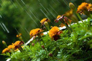 Погода в Украине на воскресенье, 31 июля