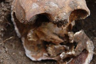 В доме известного продюсера найдена голова женщины, трупом которой накормили детей 132 года назад