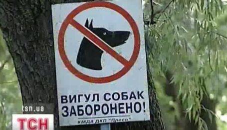 Новые правила жизни собак