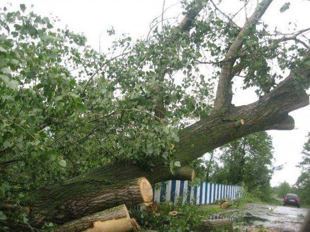 В Польше смерчи и бури разрушили десятки домов