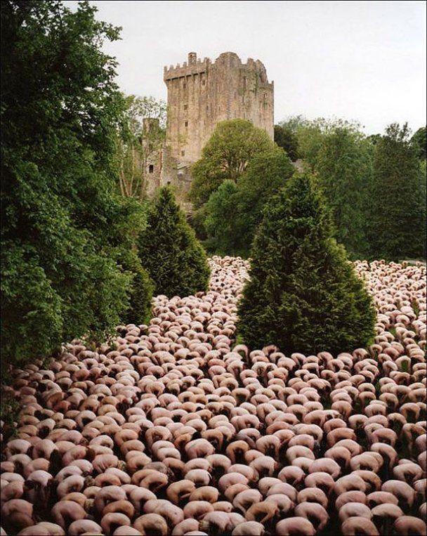 В Бельгии 800 человек приняли участие в голой фотосессии