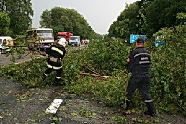 Потужний буревій заблокував автостраду в Західній Україні