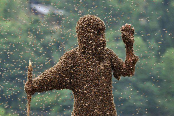 Китаєць повісив на себе 26 кг бджіл заради рекорду