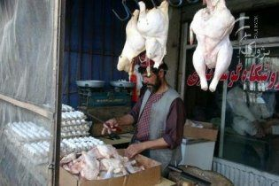 """Афганські таліби заборонили продавати """"неправедних"""" заморожених курей"""