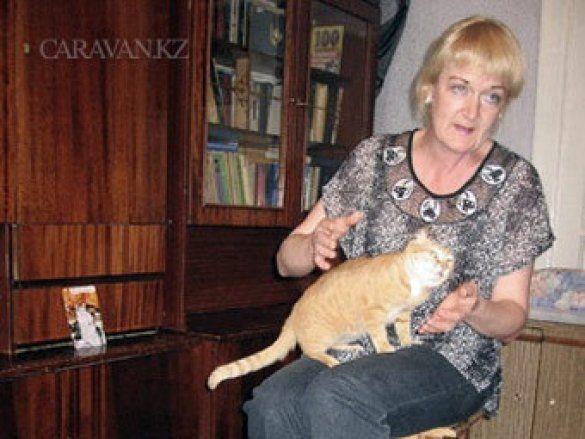 Власниця 50 кішок
