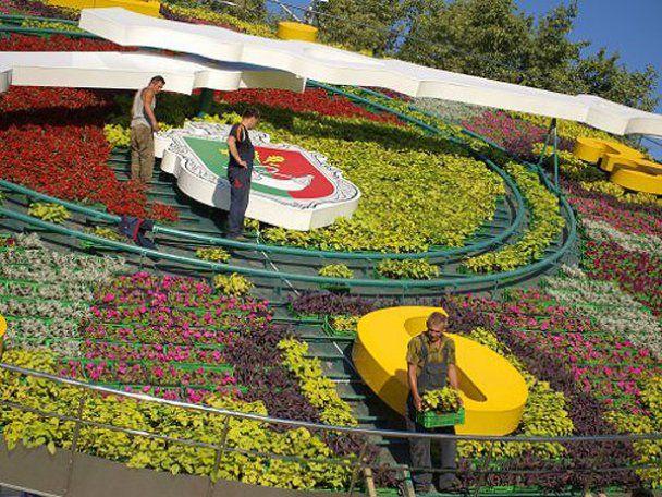 Крупнейшие в мире цветочные часы запустили в Украине