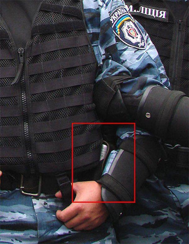 "СМИ: ""Беркут"" на День Независимости травил митингующих газом"
