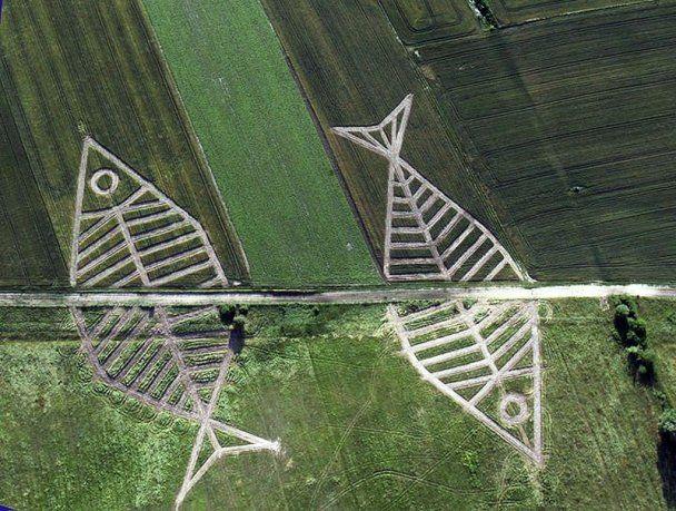 На украинско-польской границе появились гигантские изображения рыб