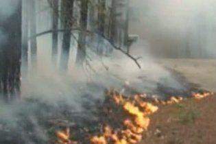 У Техасі від лісових пожеж згоріло вже близько 500 житлових будинків