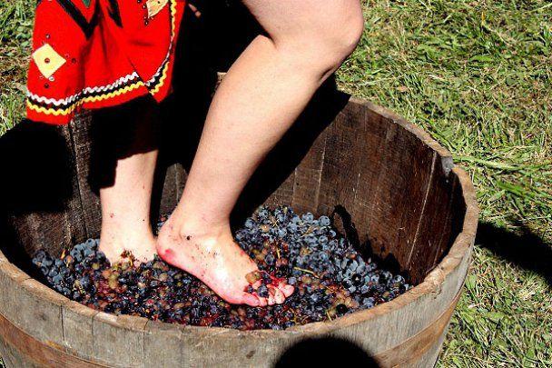 Руслана влаштувала дикі танці у діжці з вином