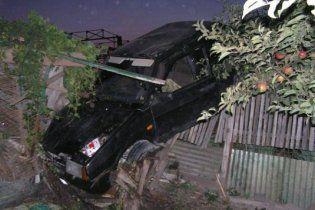 В Ровно пьяный киевлянин на авто залетел на яблоню