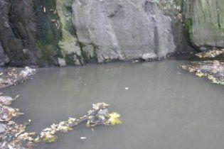 """На Черкащині цукровий завод перетворює річку на смердюче """"молоко"""""""