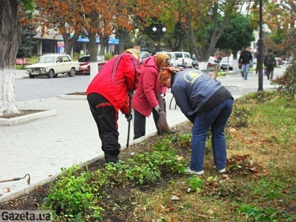 К приезду Януковича Каменец-Подольский украшают цветами