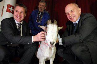 Перед выборами у швейцарской партии украли любимого козла