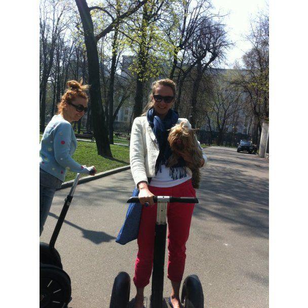 Пономарев в Фейсбуке ищет сучку, а Сичкарь торгует котятами