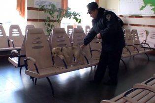 """Житель Кривого Рога """"минировал"""" вокзал более 70 раз"""