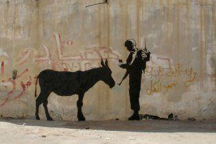 В Афганістані вибухнув замінований віслюк, є жертви