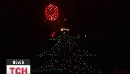 Папа Римский включил самую большую в мире елку