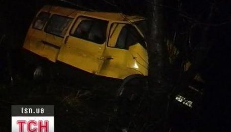 ДТП на Донетчине: маршрутка врезалась в дерево