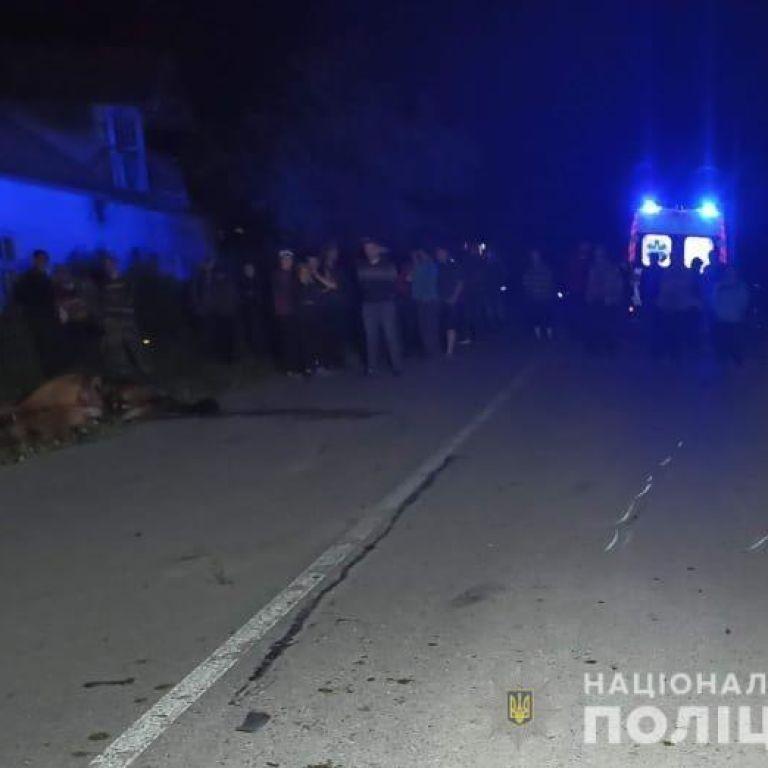 У Львівській області 25-річний мотоцикліст посеред дороги врізався в коня: чоловік та тварина загинули (фото)