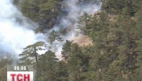 В Крыму огонь охватил более 1,5 га реликтового леса