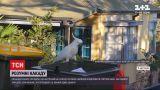 Новини світу: какаду навчилися відкривати сміттєві баки та передають ці знання один одному