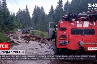 Погода в Україні: у західних та північних областях слід чекати на грози та зливи зі шквалом