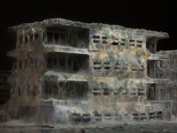 Італійський художник показав міста після Апокаліпсису
