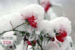 Через тиждень Україну накриють затяжні морози до -20 градусів
