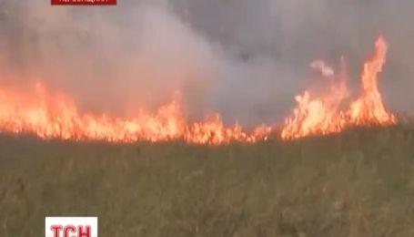 На Херсонщине сгорело пол-гектара леса