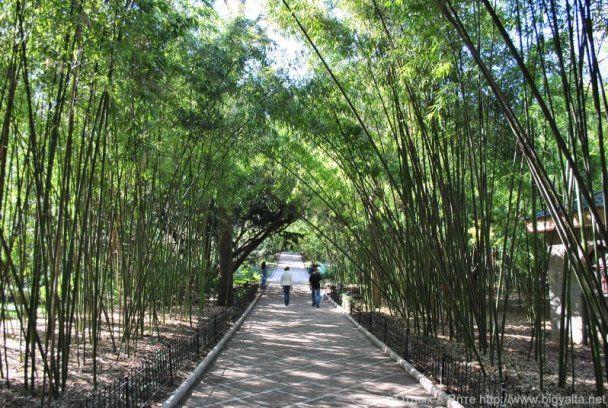 фото парк флоры и фауны роев ручей презентация