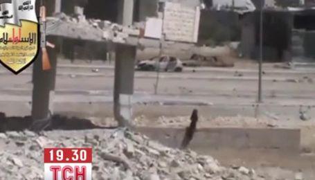 В почти полностью разрушенном Дамаске продолжаются обстрелы