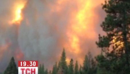 В Каліфорнії  вирує найбільша за останні десятиліття лісова пожежа