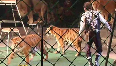 Национальный цирк представил новую программу с экзотическими животными
