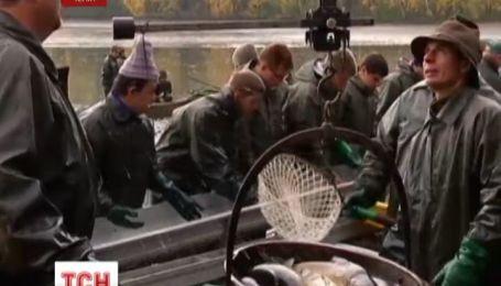 В Чехии стартовала традиционная охота на карпа