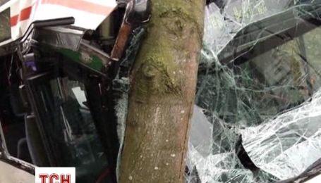 Школьный автобус врезался в дерево вблизи немецкого города Фехта