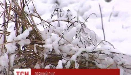 Прикарпатье засыпало первым снегом