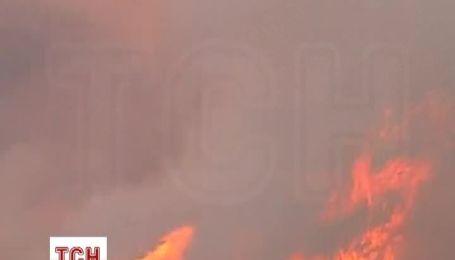 Новый год в Австралии затмили масштабе лесные пожары