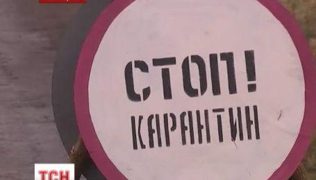 На Луганщині знайшли африканську чуму
