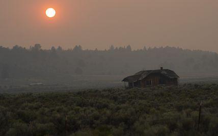 Масштабные лесные пожары в США: выгорело более 160 тыс. га насаждений
