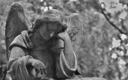 Трагедія на Прикарпатті: на території приватного господарства загинула трирічна дівчинка