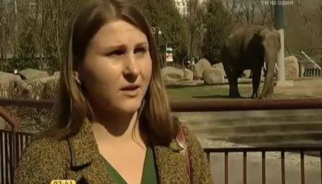 Украинцы спасают животных в зоопарках страны