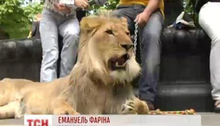 Вулицями Києва прогулявся лев Понтифіка Бенедикта 16-го