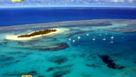 В Тихом океане появился самый большой природный заповедник