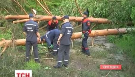 Негода наробила лиха на Чернігівщині