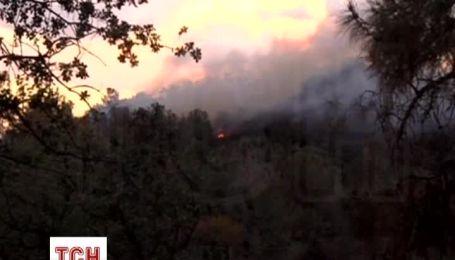 Из-за лесного пожара в Калифорнии эвакуированы тысячи жителей