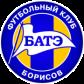 Эмблема ФК «БАТЕ Борисов»