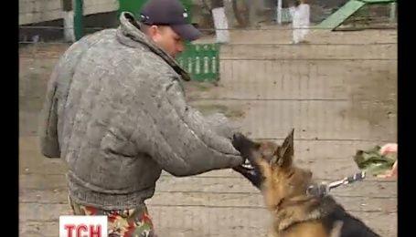 Киевлян в метро будут охранять кинологи с собаками